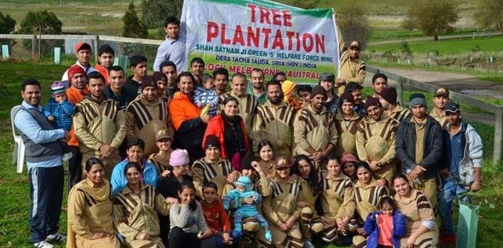 tree plantation in melbourne australia